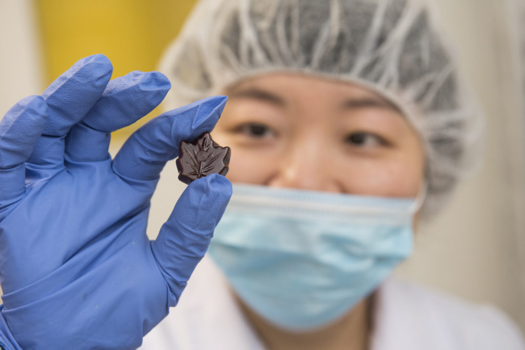 Woman in mask, hairnet and blue rubber gloves holds maple-leaf shaped chocolate.